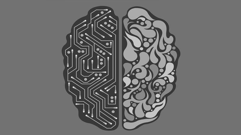 An illustration of a cross-section of a brain, where half appears as a brain and the other half as a computer network