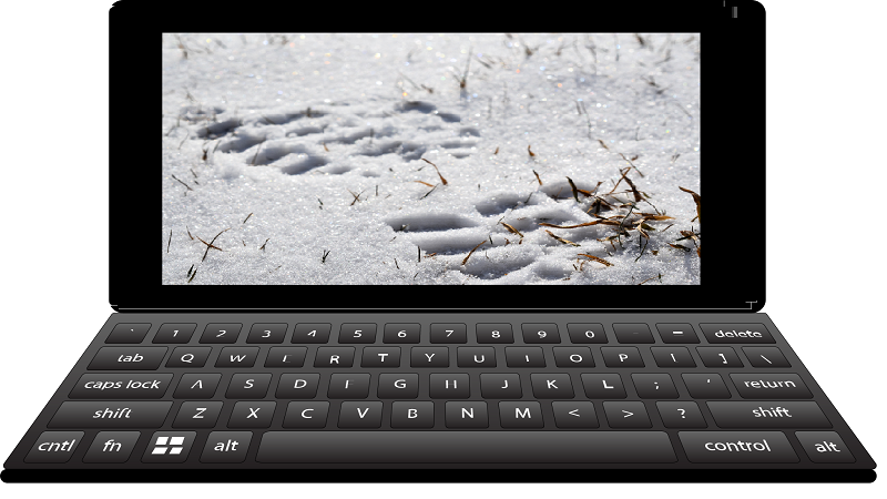 An image of a footprint in the snow rendered on an illustration of a laptop screen
